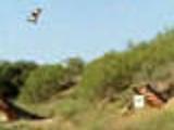 Amazing skateboard trick