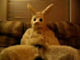 What the easter bunny does in his free time