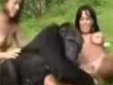 2 girls, 1 monkey