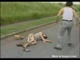 Japanese Rape Fantasy - Rape Videos
