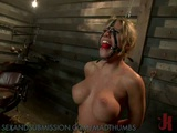 Busty Blonde Slave Gets Her Pussy After A Hard Anal Sex