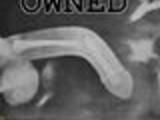 Owned BonerBone