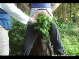 Torturing Dick With Nettles - Fetish Videos