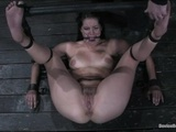 5755_bobbi_starr